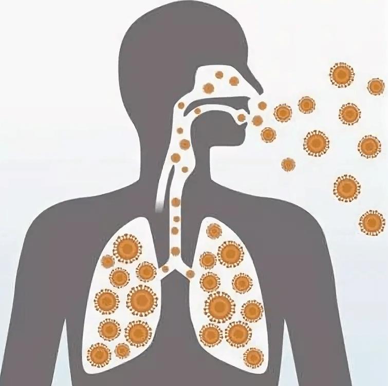 Инфекции верхних дыхательных путей (ИВДП)