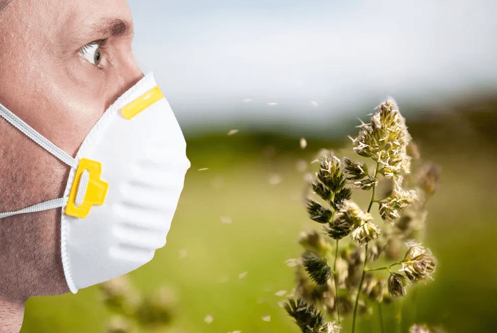 Сезонная аллергия: причины, лечение, профилактика